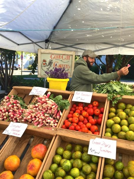 Why Every JMU Student Needs to Shop at the Harrisonburg Farmers Market & The Top 10 Best Blogs on Jmu